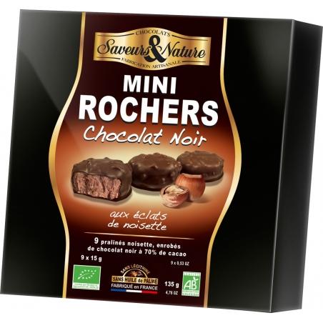 SaveursundNature Bio Haselnusstaler Edelbitterschokolade 9 Stück