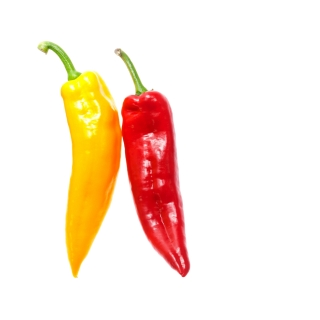 Peperoni Corne MIX Rot / Gelb