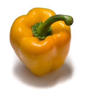 Peperoni Gelb