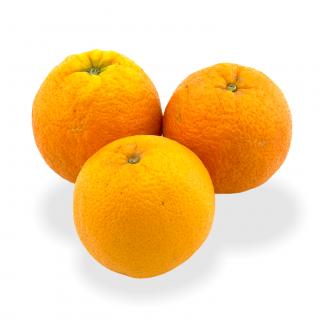 Orangen Navels - Täglich frische Orangen Navels von unserem Bio und Knospe zertifiziertem Gemüse und Früchte Lieferanten aus der
