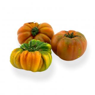 Tomaten Merinda Extra - Täglich frische Tomaten Merinda Extra von unserem Bio und Knospe zertifiziertem Gemüse und Früchte Liefe