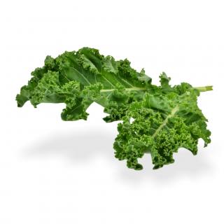 Federnkohl grün - Täglich frische Federnkohl grün von unserem Bio und Knospe zertifiziertem Gemüse und Früchte Lieferanten aus d