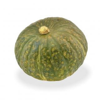 Kürbis Delica Extra - Täglich frische Kürbis Delica Extra von unserem Bio und Knospe zertifiziertem Gemüse und Früchte Lieferant