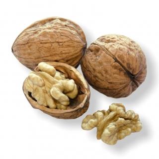 Baumnüsse Grenoble 500gr. - Täglich frische Baumnüsse Grenoble 500gr. von unserem Bio und Knospe zertifiziertem Gemüse und Früch