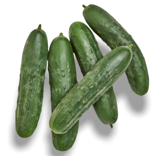 BIO Nostrano Gurken - Täglich frische Birnen Kaiser von unserem Bio und Knospe zertifiziertem Gemüse und Früchte Lieferanten aus