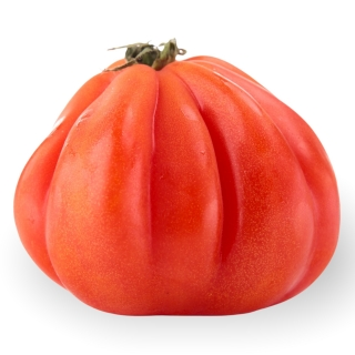 BIO Tomaten Cuore di Bue - Täglich frische Birnen Kaiser von unserem Bio und Knospe zertifiziertem Gemüse und Früchte Lieferante